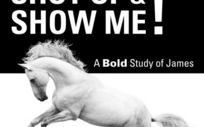 Shut Up & Show Me! A Bold Study of James by Bruce Atkinson – out now