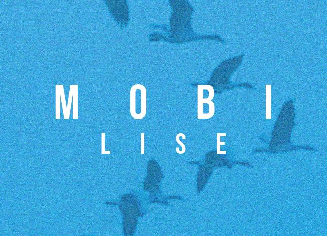 kt-2020-mobilise