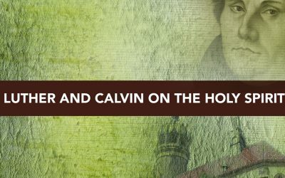 Session 5 – Luther and Calvin and the Holy Spirit